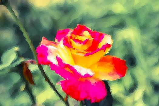 Crimson Rose Painting by Don Wright