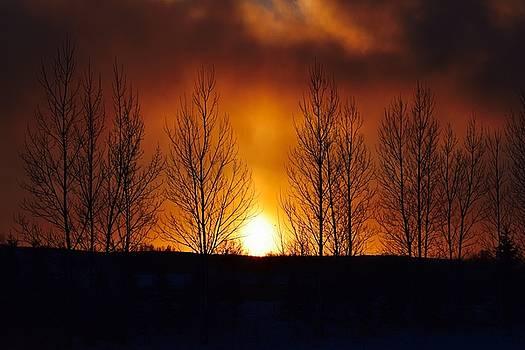 Crisp Sunset by Dacia Doroff