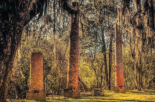 Crocheron Columns old cahawba by Phillip Burrow