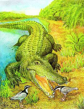 Natalie Berman - Crocodile