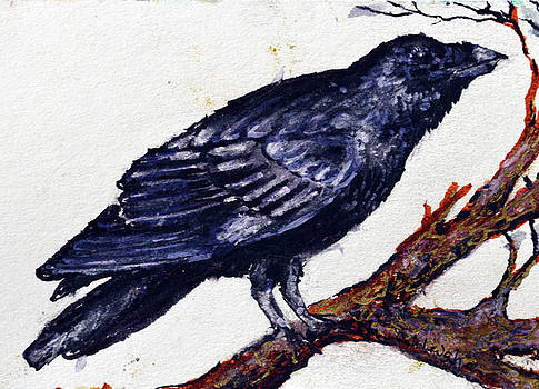 Crow cooos and sees you by Ashleigh Dyan Bayer