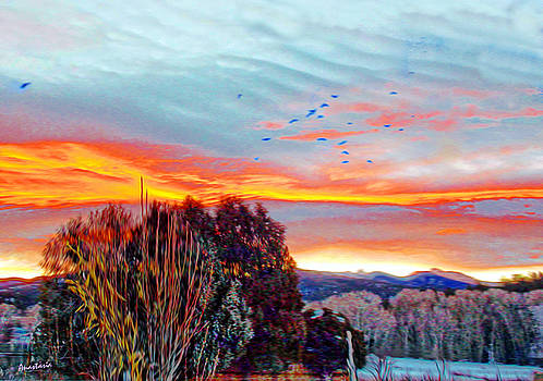 Crows Before Dawn El Valle New Mexico by Anastasia Savage Ealy