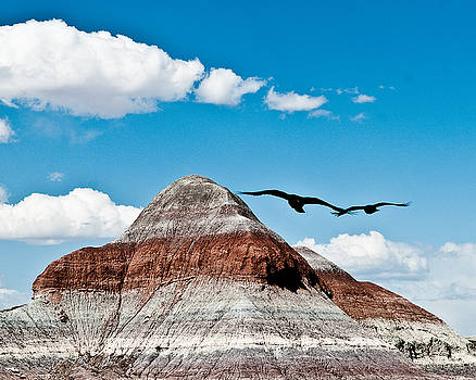 Crows In the Painted Desert by Ed Selby
