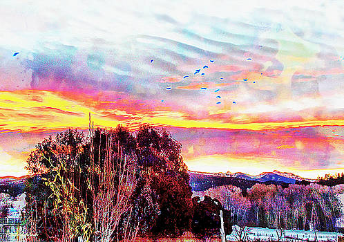 Crows Over Pre Dawn El Valle by Anastasia Savage Ealy