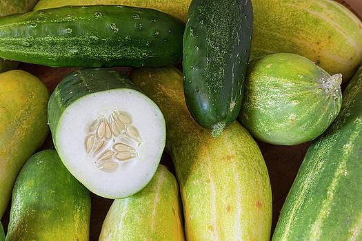 James BO Insogna - Cucumber Seeds