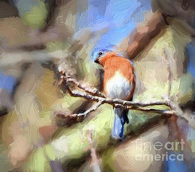 Curious Bluebird by Kerri Farley