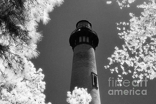Currituck Beach Lighthouse by Jeff Holbrook