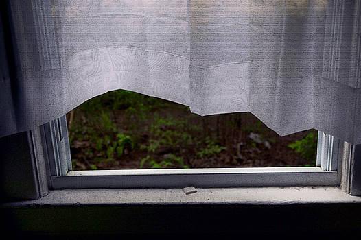 Curtains by Yuri Lev