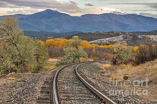 Curve in the Tracks in Autumn by Sue Smith