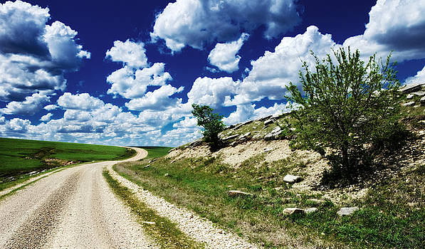 Curving Gravel Road by Eric Benjamin