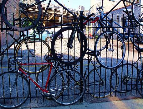 Cycle Fence by Anna Villarreal Garbis