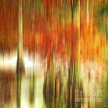 Scott Pellegrin - Cypress Swamp in the Fall