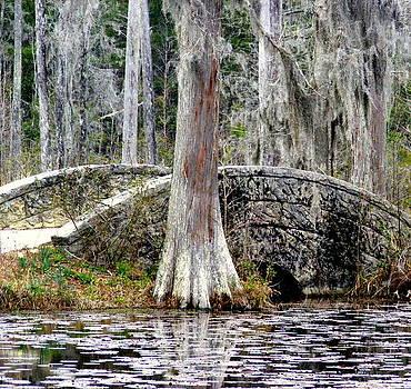 Cypress Swamp Stone Bridge by Elena Tudor