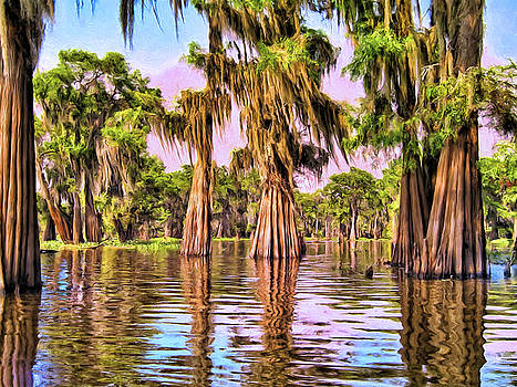 Dominic Piperata - Cypress Trees in a Louisiana Bayou