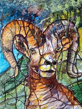 Cyprus Mouflon by Anastasis  Anastasi
