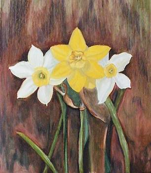 Daffodil by Andrea Inostroza