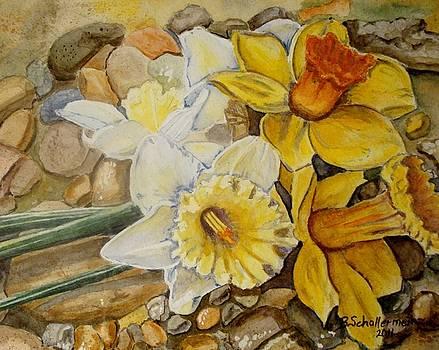 Daffodils by Bonnie Schallermeir