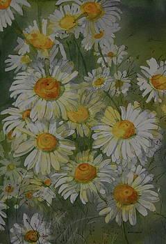 Daisy Fresh by Helen Shideler