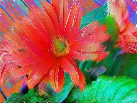 Daisy Fun by Karen Nicholson