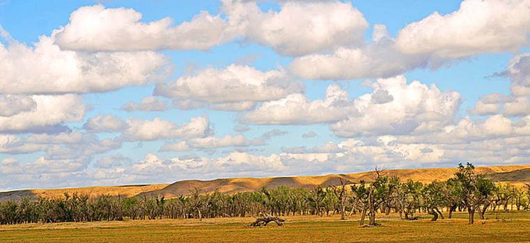 Dakota Hills by Bill Morgenstern