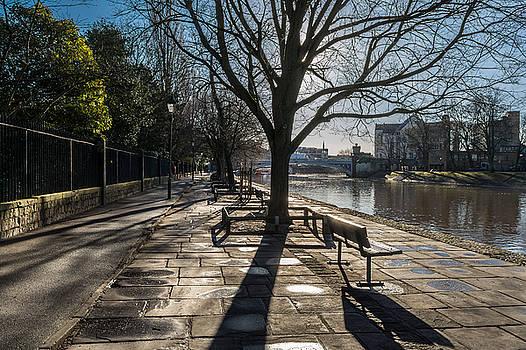 Dame Judy Dench Walk by Gemma Greaves