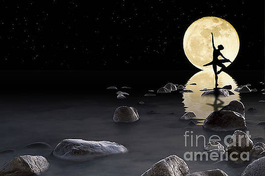 Dance by the light of the moon by Jim  Hatch