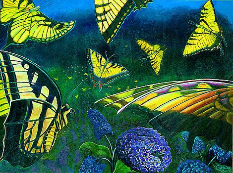 Dance of the Butterflies by Peter Bonk
