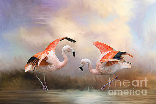 Dance of the Flamingos  by Bonnie Barry