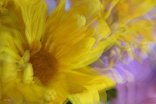 Linda Sannuti - Dancing daisy