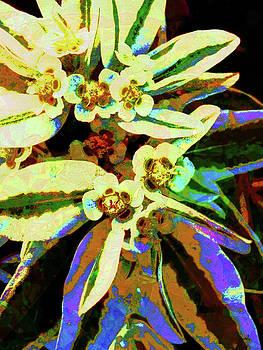 Dancing Flowert by Brad Bleich