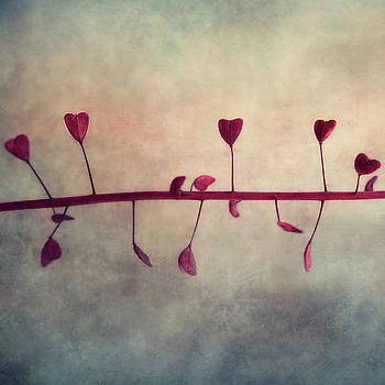 Dancing Hearts by Claudia Moeckel