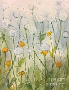 Dandelions by Lucia Grilletto