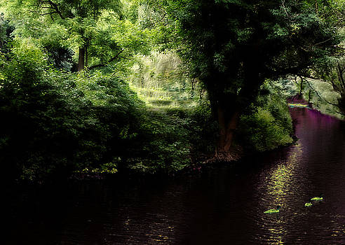 Dark Creek by Chayla Brown