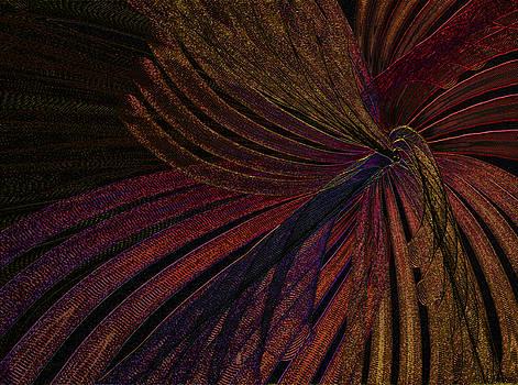 Dark Feather by Constance Krejci