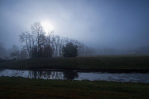 Dark Foggy Morning by Victoria Winningham