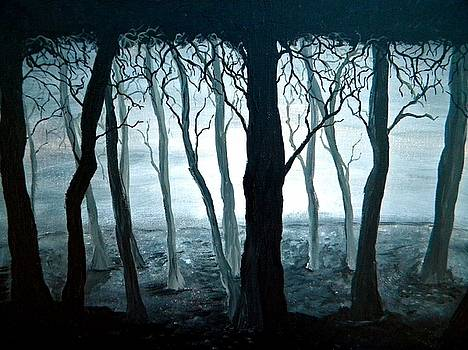 Dark Forest by Sabrina Zbasnik