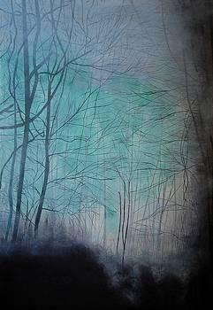 Dark Forest by Senthil Kumar