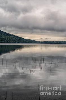 Patricia Hofmeester - Lake in Acadia