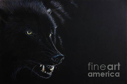 Dark by Sandi Baker