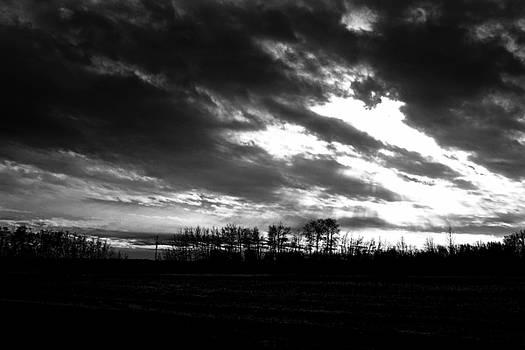 Dark Skies by Brian Sereda