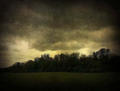 Dark Sky by Cynthia Lassiter