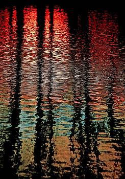 Dark Waters by Gillis Cone