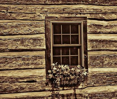 Dark Window Two by Dennis Baswell