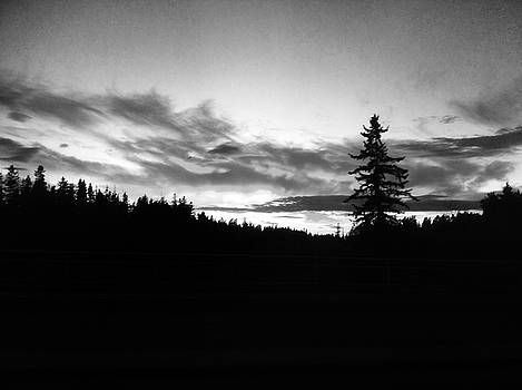 Darkness settles upon a late fall sunset by Brian Sereda