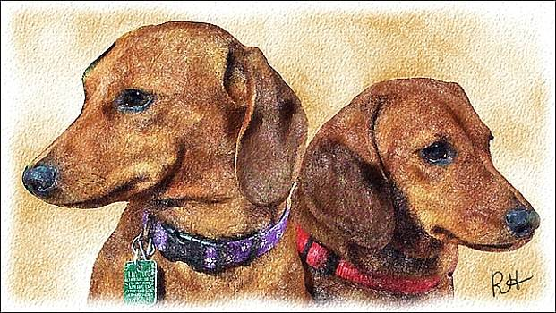 Daschund Sisters by Richard Heath