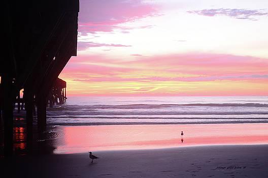 Dawn at the beach 8-14-16 by Julianne Felton