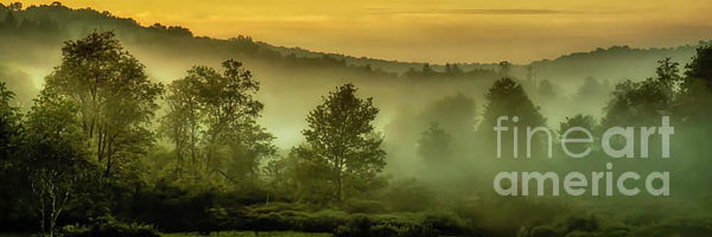 Dawn at Wildlife Management Area by Thomas R Fletcher