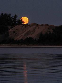 Dawn Moon Glow by Suzy Piatt