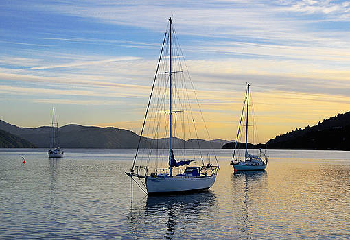 Dawn Picton New Zealand by Barry Culling