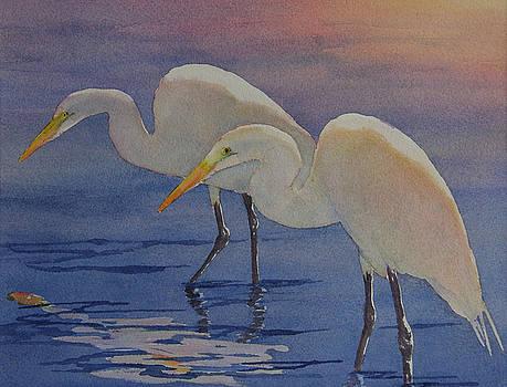 Dawns Early Light by Judy Mercer